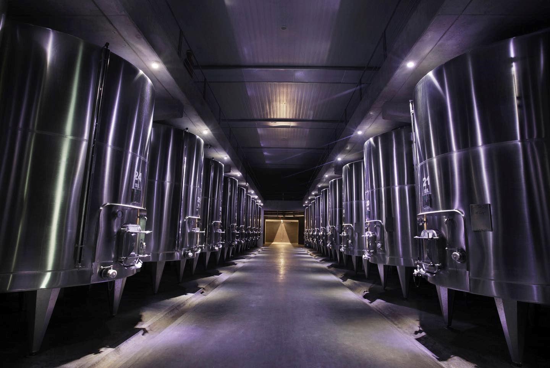 VISIT WINE CELLARS WITH WINE TASTING