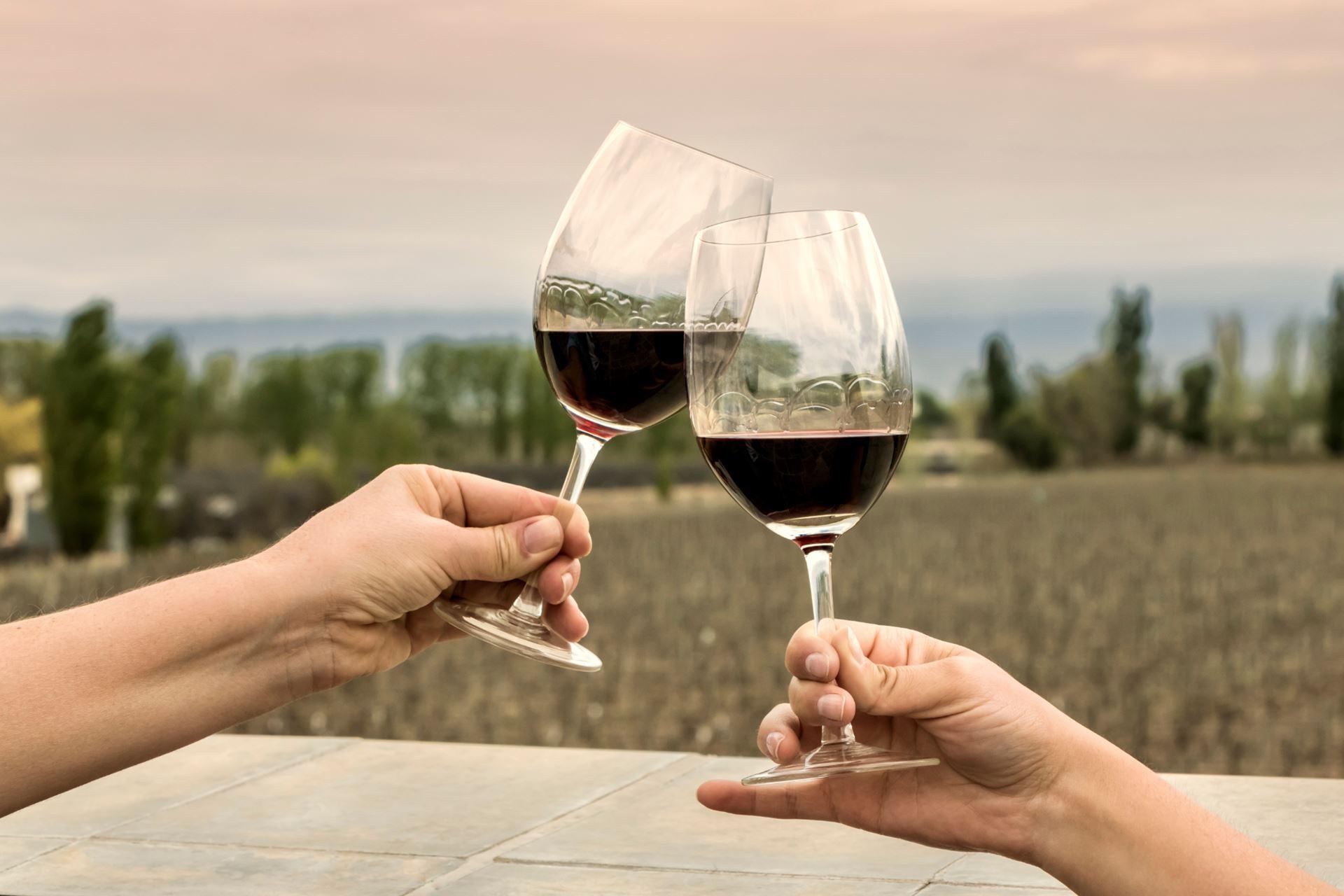 Escolha os melhores tours do vinho em Mendoza