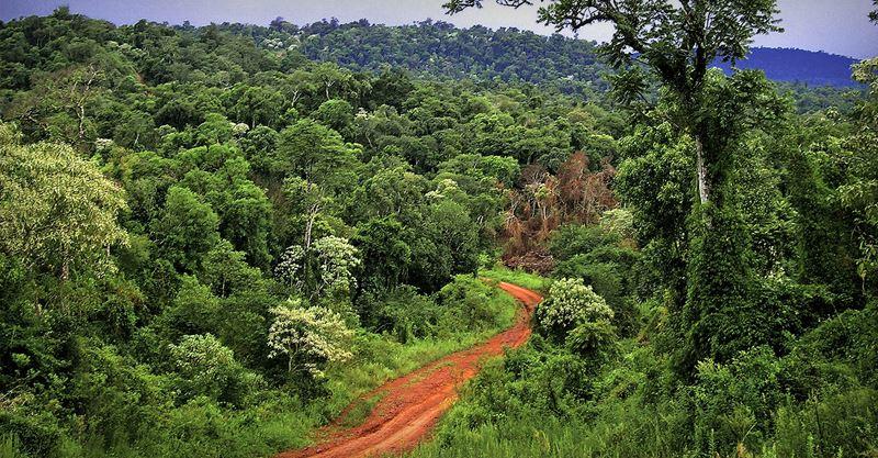Coisas Para Fazer Em Iguazu Argentina