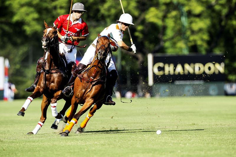 What You Should Know About The Polo
