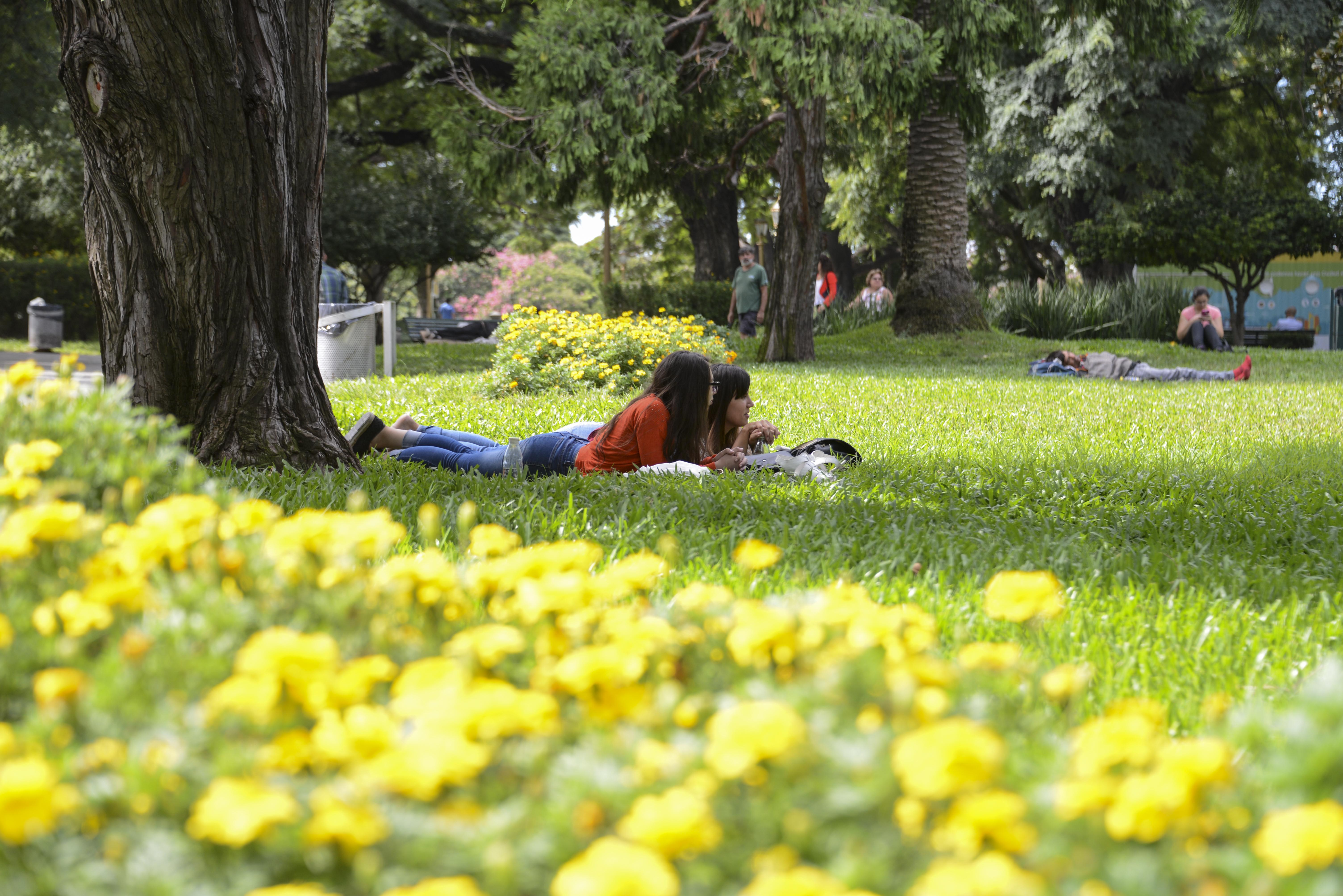 Plaza Serrano, Esa Bohemia Chic