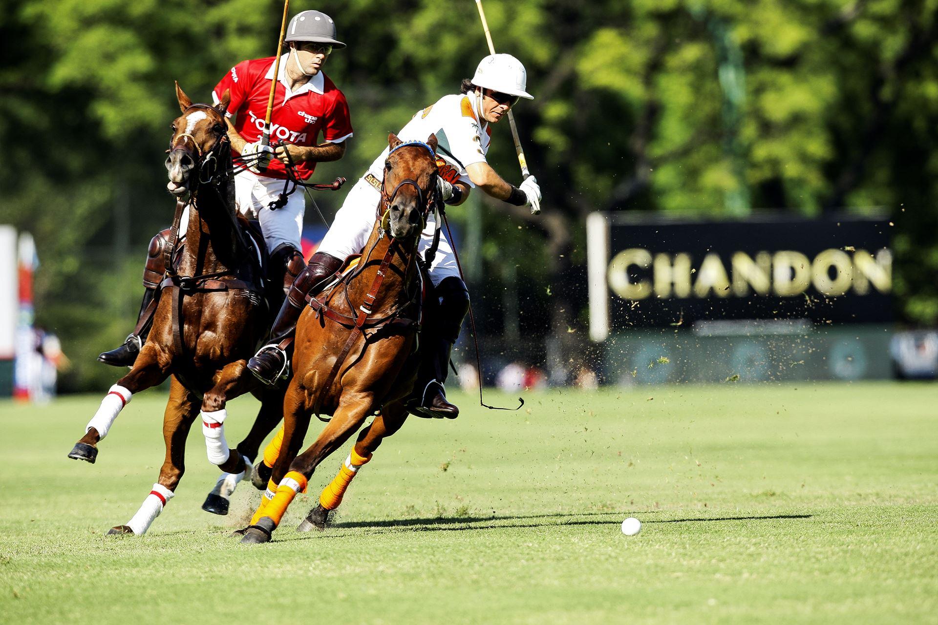 Dónde aprender, jugar y ver Polo en Argentina