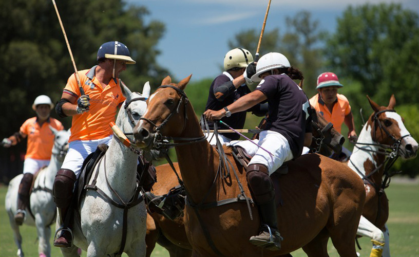 Polo Para Turistas, A Proposta Do Argentina Polo Day