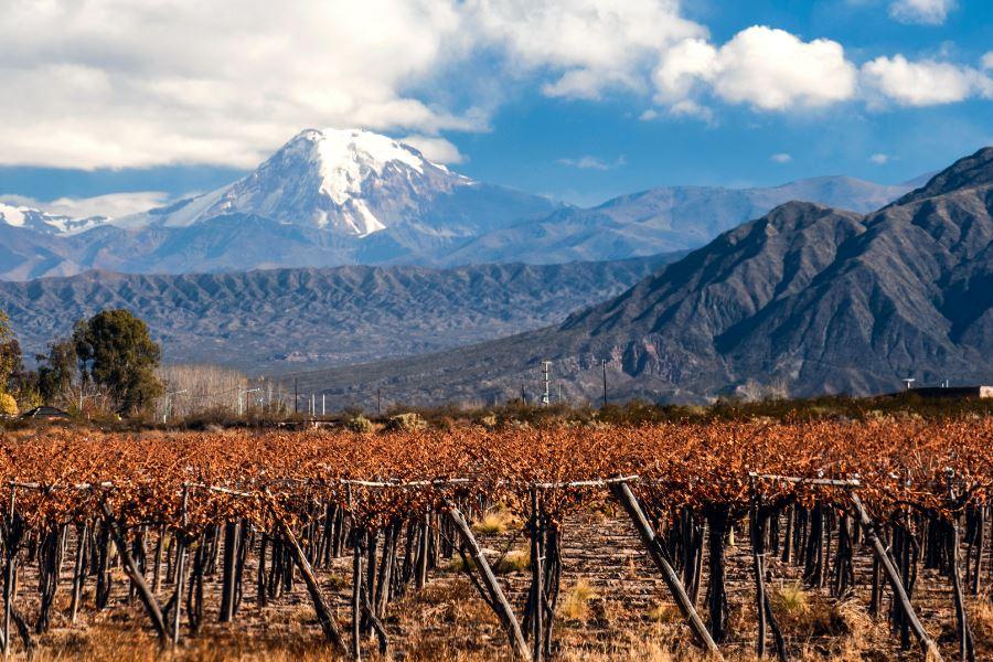Guia completo para visitar Mendoza