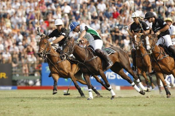 Polo, The Sport Chosen By Tourists In Argentina