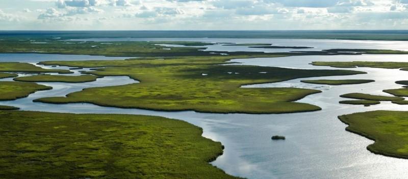 Esteros Del Iberá: The Kingdom Of Water